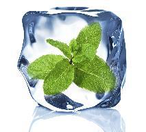 Mrożenie ziół: 2 skuteczne sposoby