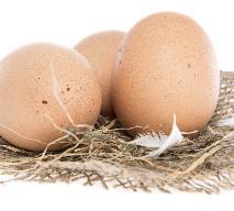 Zatrute jajka w Europie - czym są skażone? Jak uniknąć zatrucia skażonymi jajami? [VIDEO]